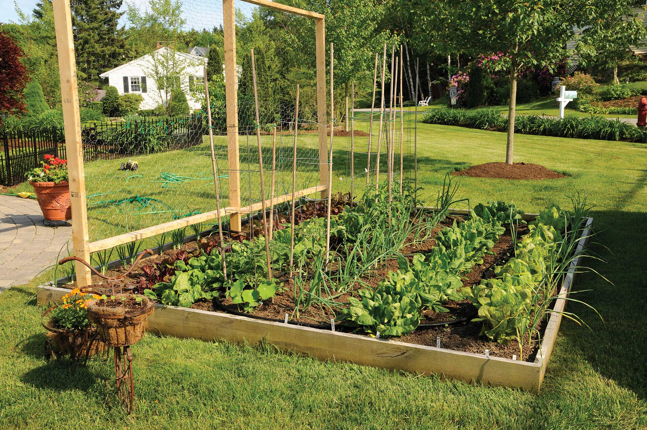 Zimska sadnja obitelj hr for Large garden bed ideas