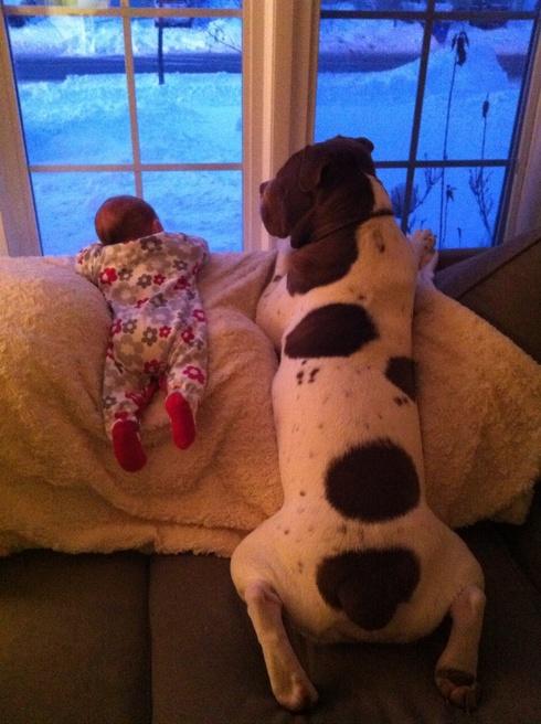 Čekamo tatu!