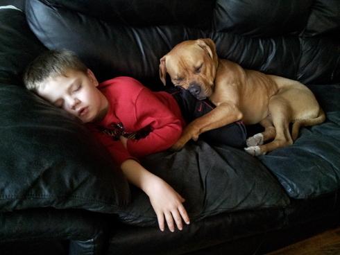 Najslađe spavanje :)