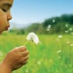 Pobijedite alergije