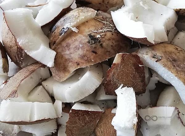 Kokosovo ulje iz vlastite kuhinje