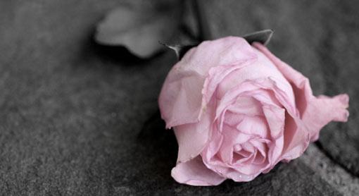 Kako preboljeti smrt supružnika