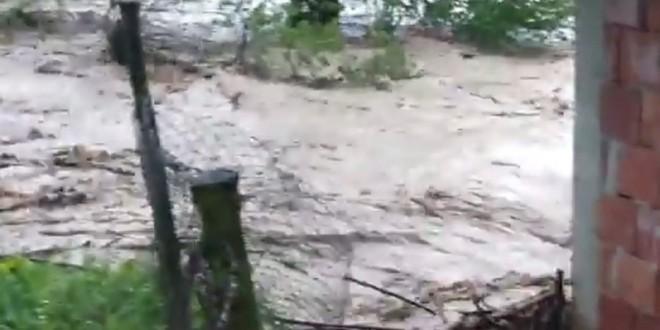 Dječji sastavi na temu poplava: Učitelji su plakali!