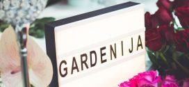 """U Čepinu otvorena cvjećarnica """"Gardenija cvjetni dizajn"""""""